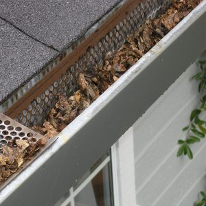 gutter cleaning and maintenance service