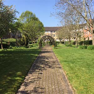 housing & property maintenance - about heath & wiltshire - Beautoful property grounds that have been maintained by H&W staff